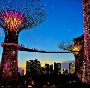 """Supertrærne"" i Singapore`s ""Garden by the Bay"" (foto STB)"