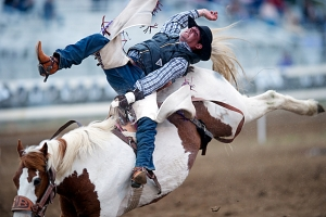 Er rodeo den amerikanske drømmen ? Fra California, Red bluff round-up (atlanticlink.net)